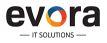 Berater/Projektleiter/Entwickler (m/w) für mobile SAP-Lösungen